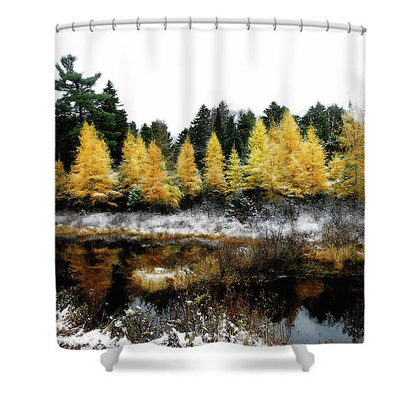 Snow Paints Larch Grove Shower Curtain