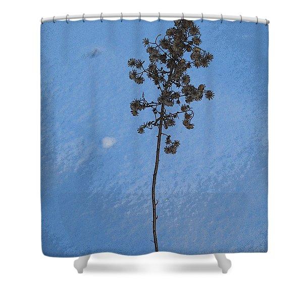 Snow Sleeper Shower Curtain