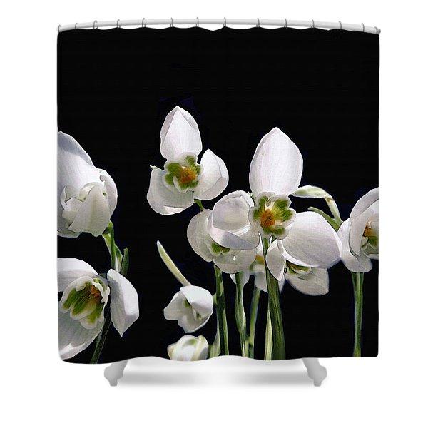 Snowdrop Flowers Shower Curtain