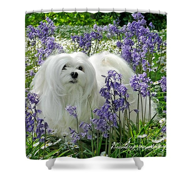 Snowdrop In The Bluebell Woods Shower Curtain