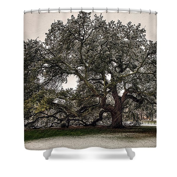 Snowfall On Emancipation Oak Tree Shower Curtain