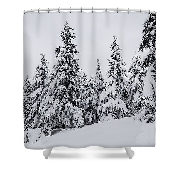 Snowy-1 Shower Curtain
