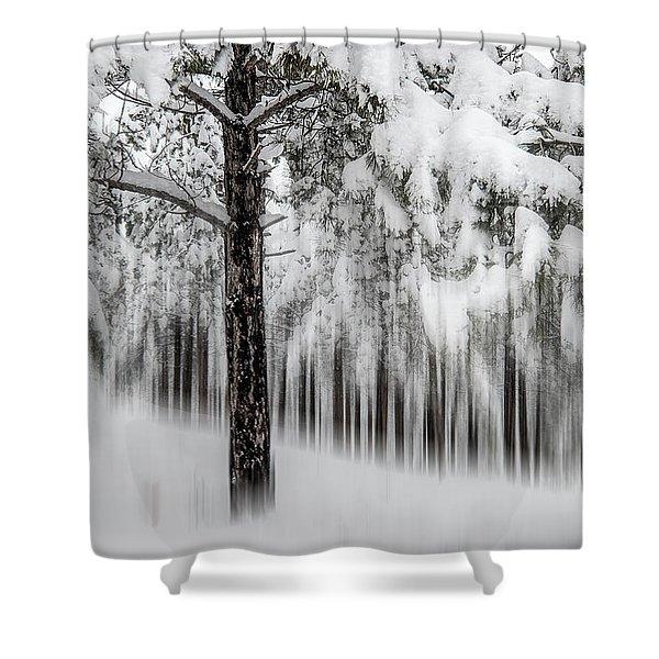 Snowy-2 Shower Curtain