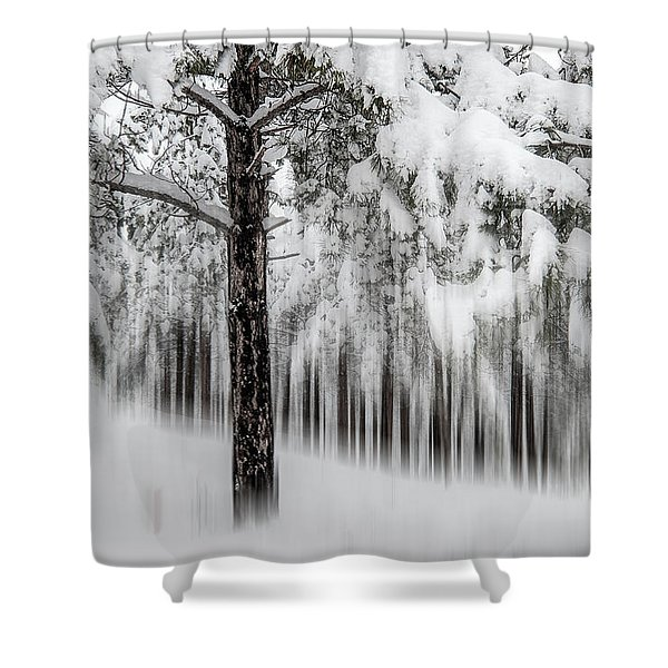 Snowy-2 Shower Curtain