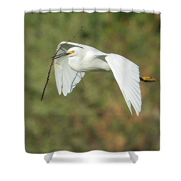 Snowy Egret 4786-091017-1cr Shower Curtain
