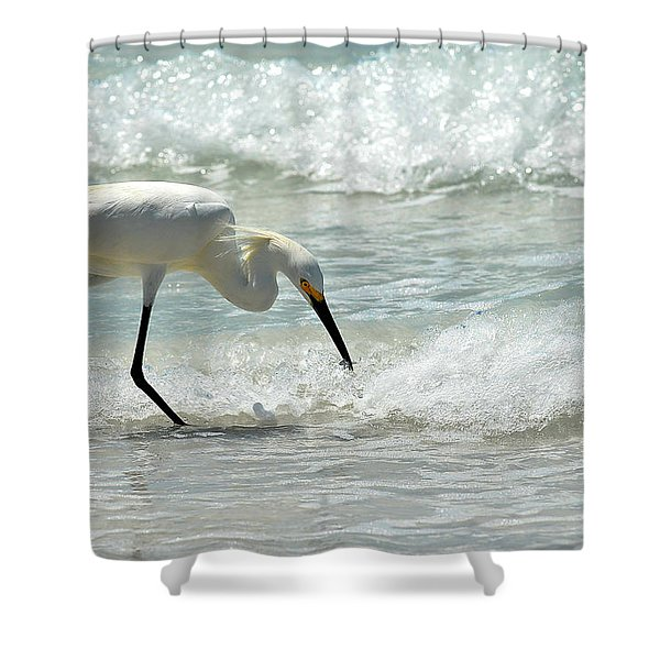 Snowy Egret 6265 Lido Beach Shower Curtain