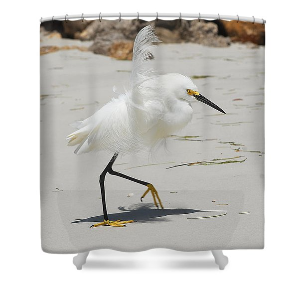 Snowy Egret 6429 Windy Shower Curtain