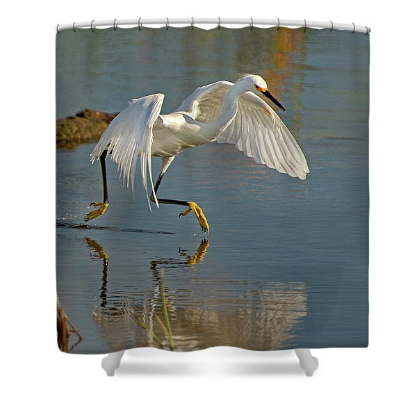 Snowy Egret On The Move Shower Curtain