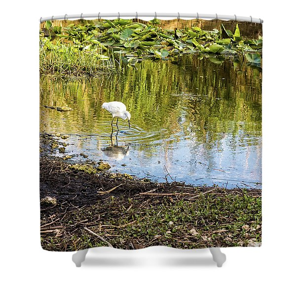Snowy Egret Reflections Shower Curtain