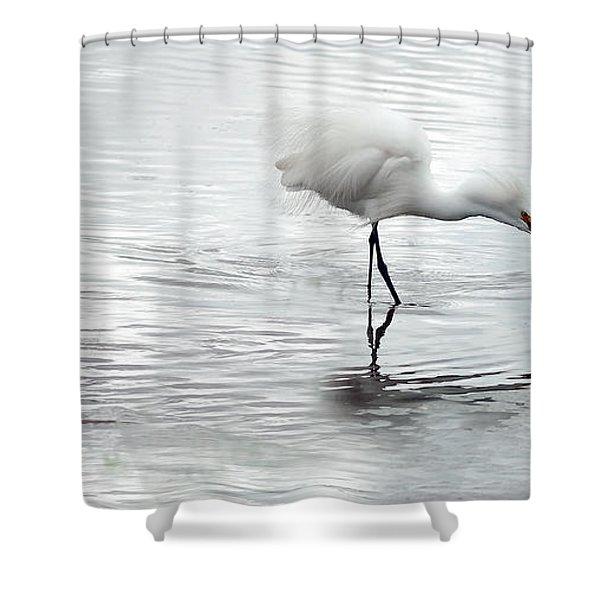 Snowy Egrets Shower Curtain