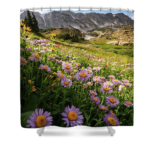 Snowy Range Flowers Shower Curtain