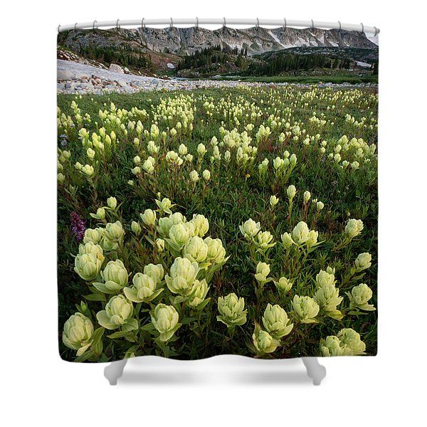 Snowy Range Paintbrush Shower Curtain
