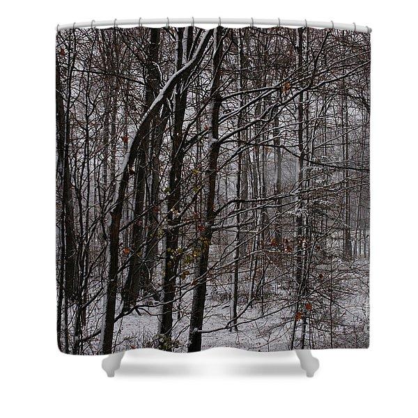 Snowy Woods Shower Curtain