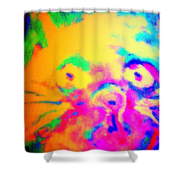 Come Look At My Amazing Cat, She Is So Colorful And Fat    Shower Curtain