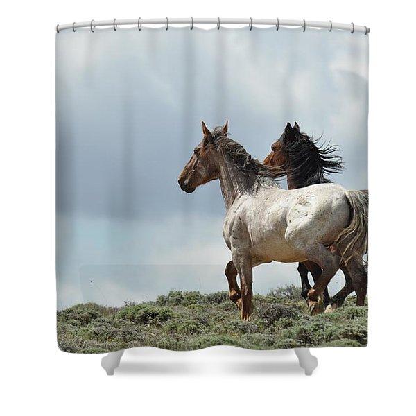 So Long Shower Curtain