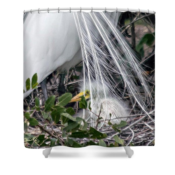 So Safe With Mom 2 Shower Curtain