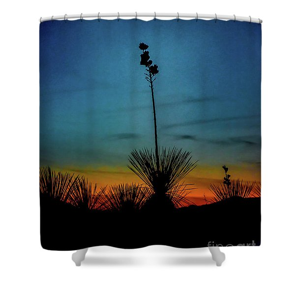 Soaptree Yucca At Sunset Shower Curtain
