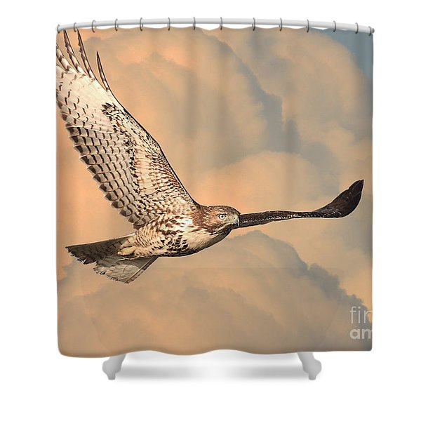 Soaring Hawk Shower Curtain