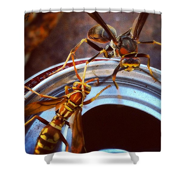 Soda Pop Bandits, Two Wasps On A Pop Can  Shower Curtain