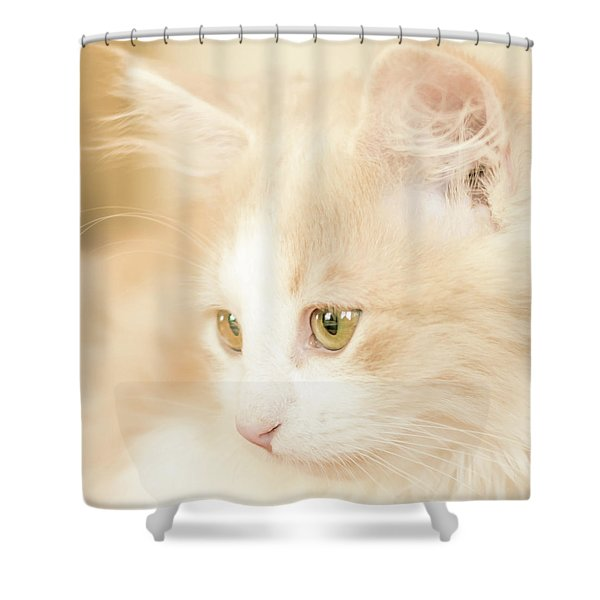 Soft And Dreamy Shower Curtain