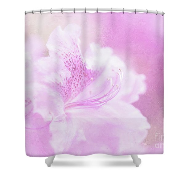 Soft And Lovely Pink Rhododendrons  Shower Curtain
