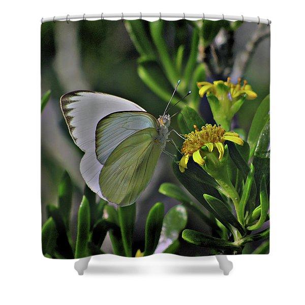 Soft As A Leaf Shower Curtain