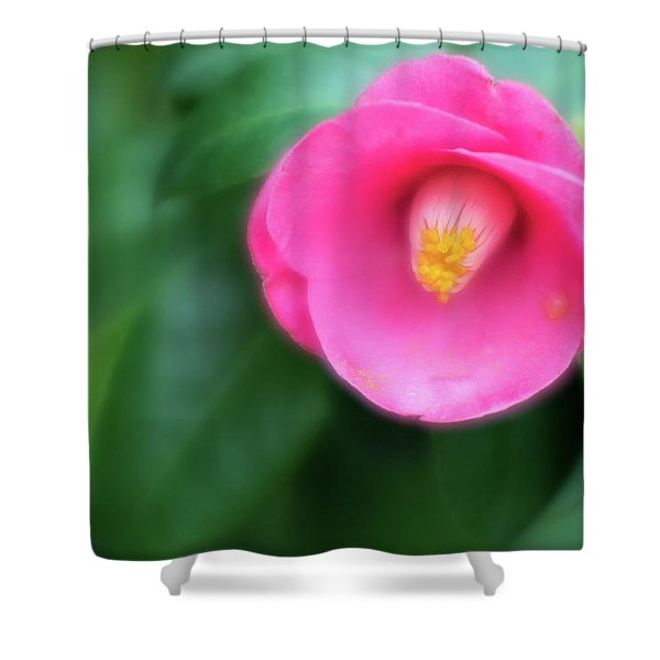 Soft Focus Flower 1 Shower Curtain