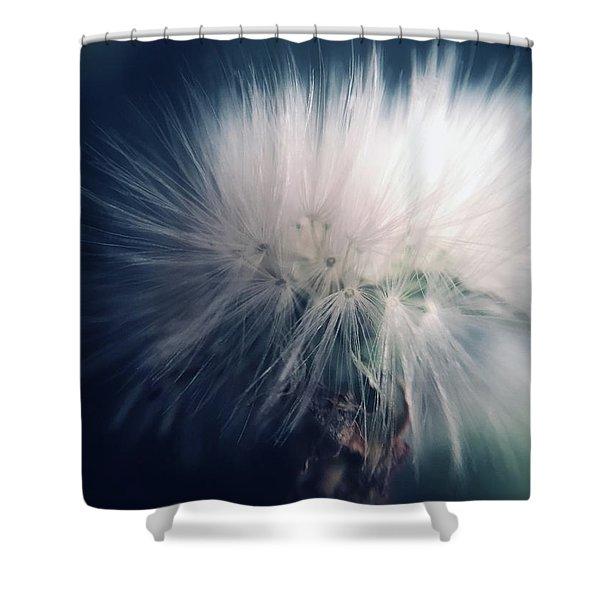 Soft Shock Shower Curtain