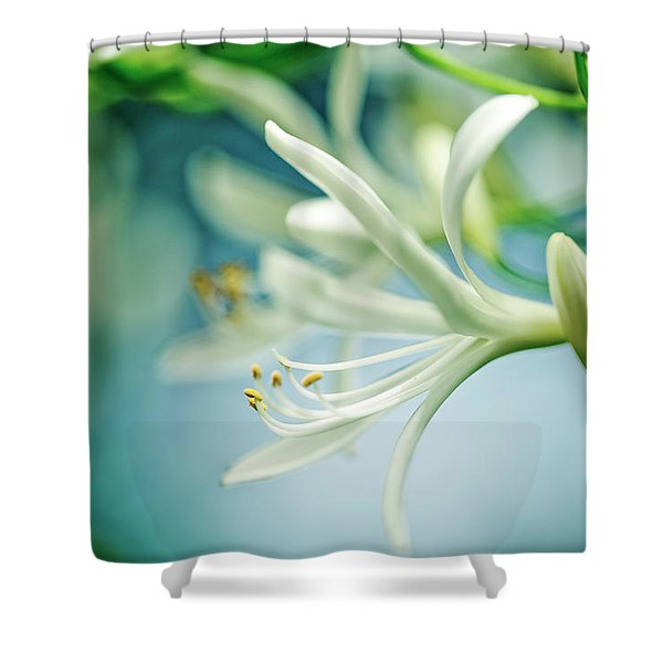 Soft White Shower Curtain