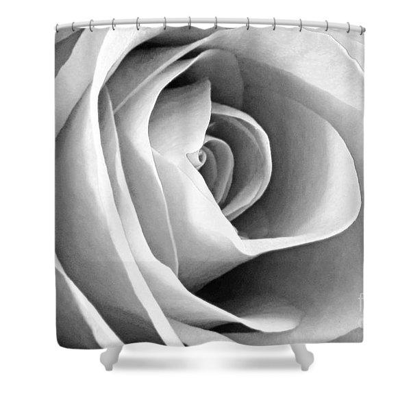 Softened Rose Shower Curtain