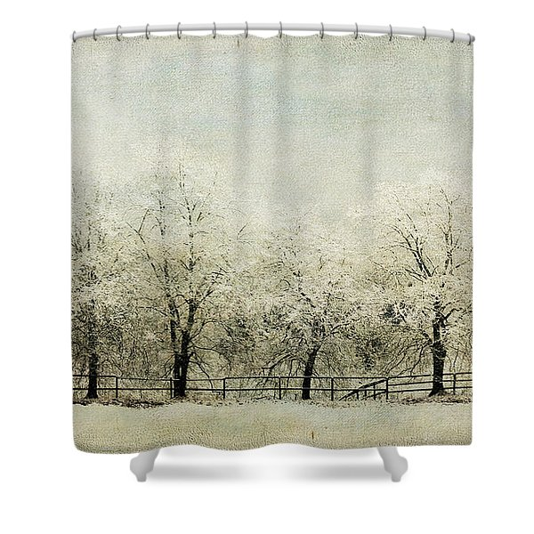 Softly Falling Snow Shower Curtain