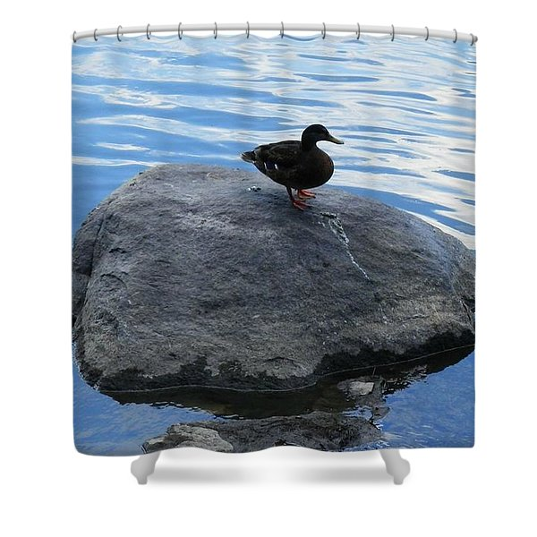 Solace 2 Shower Curtain