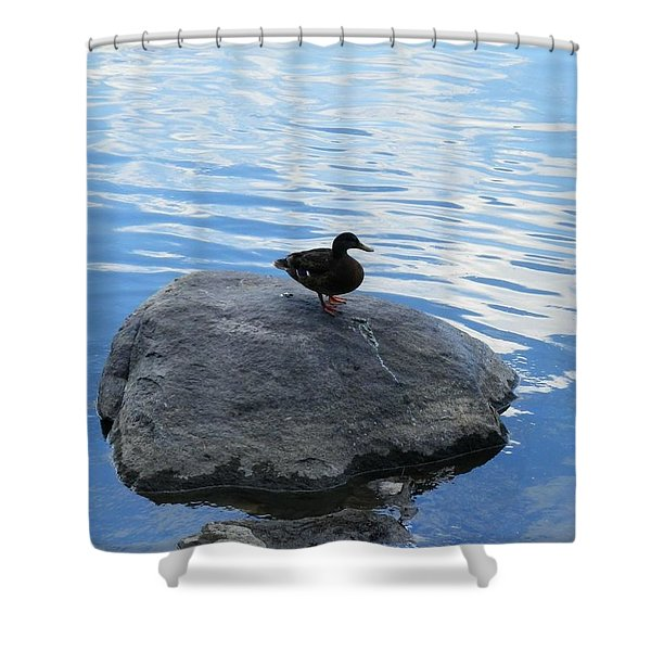 Solace Shower Curtain