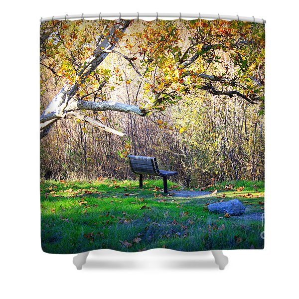 Solitude Under The Sycamore Shower Curtain