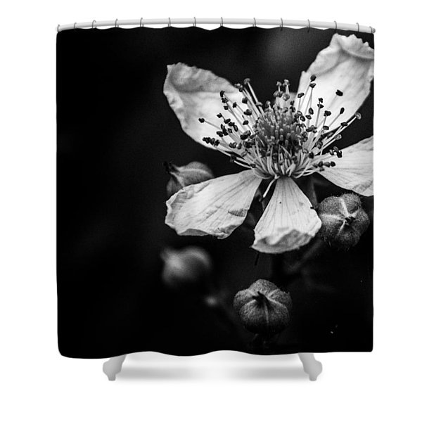 Solo In Ballet Shower Curtain