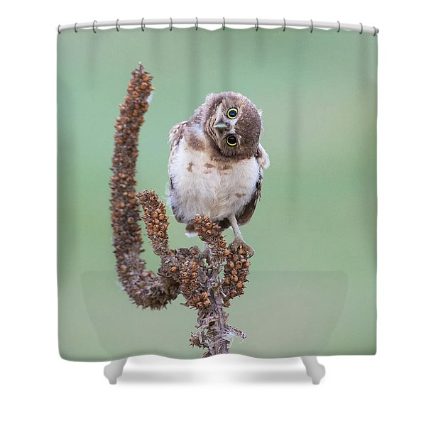 Some Days I Can't Tell Which Way Is Up Shower Curtain