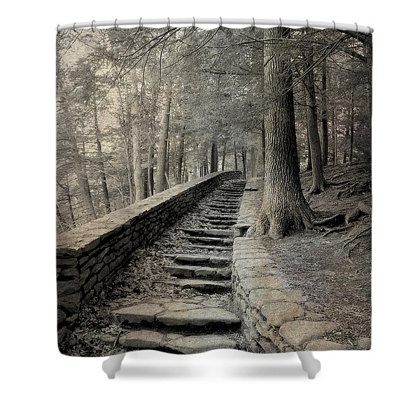 Some Other Now, Some Other When 3 Shower Curtain