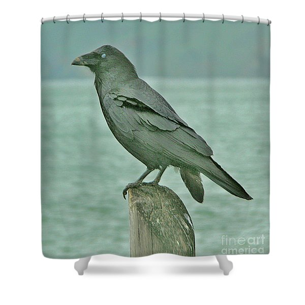 Something To Crow About Shower Curtain
