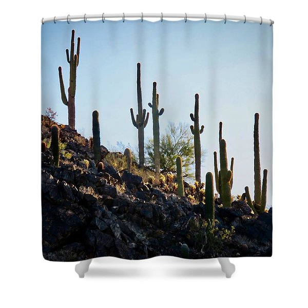 Sonoran Desert Saguaro Slope Shower Curtain