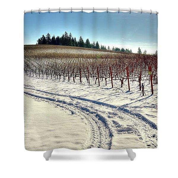 Soter Vineyard Winter Shower Curtain