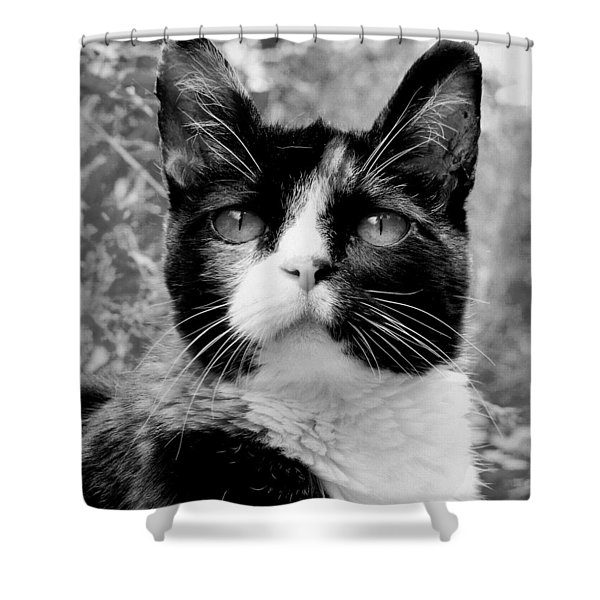 Souls Great And Small Shower Curtain
