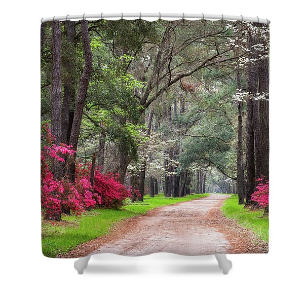 South Carolina Lowcountry Spring Flowers Dirt Road Edisto Island Sc Shower Curtain