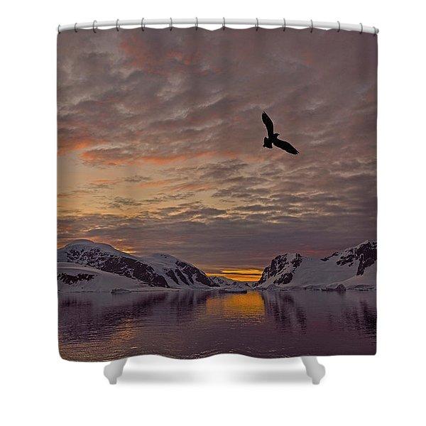 South Polar Dusk Shower Curtain