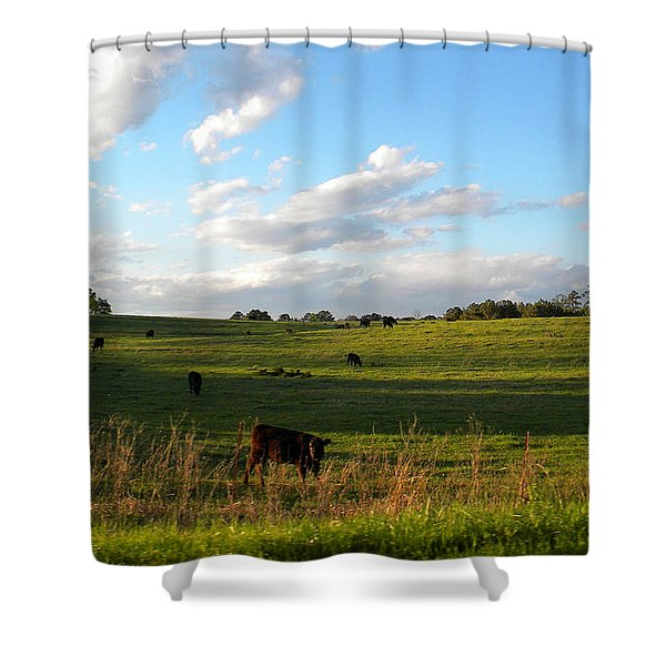 Southern Countryside Shower Curtain