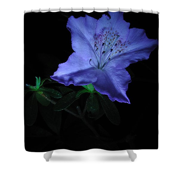 Southern Indica Azalea 1 Shower Curtain