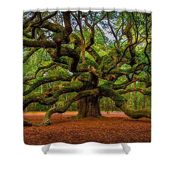 Angel Oak In Charleston Shower Curtain