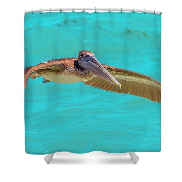Southern Most Pelican Shower Curtain