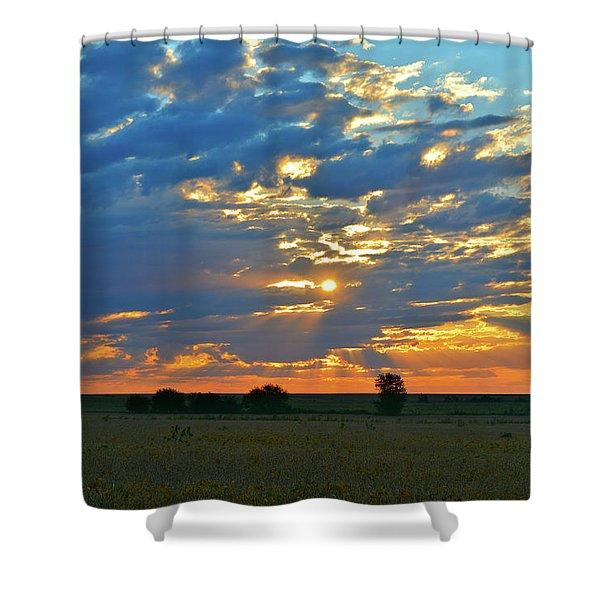 Soybean Sunrise Shower Curtain