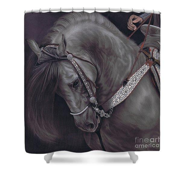 Spanish Horse Shower Curtain