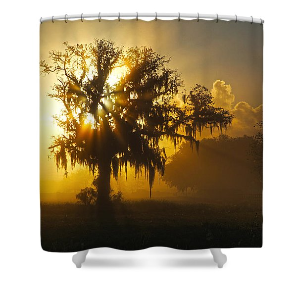 Spanish Morning Shower Curtain